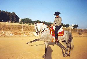 difícil equitación
